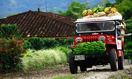 Culture And Nature Of Colombia