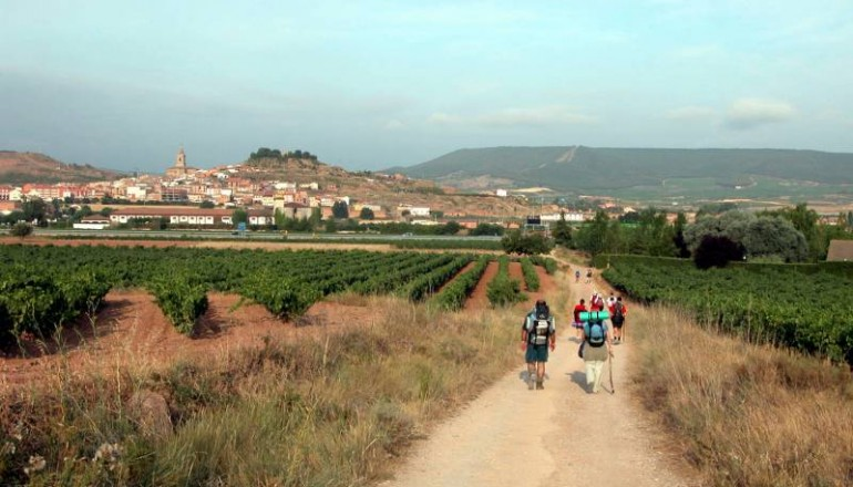 Camino at Navarette