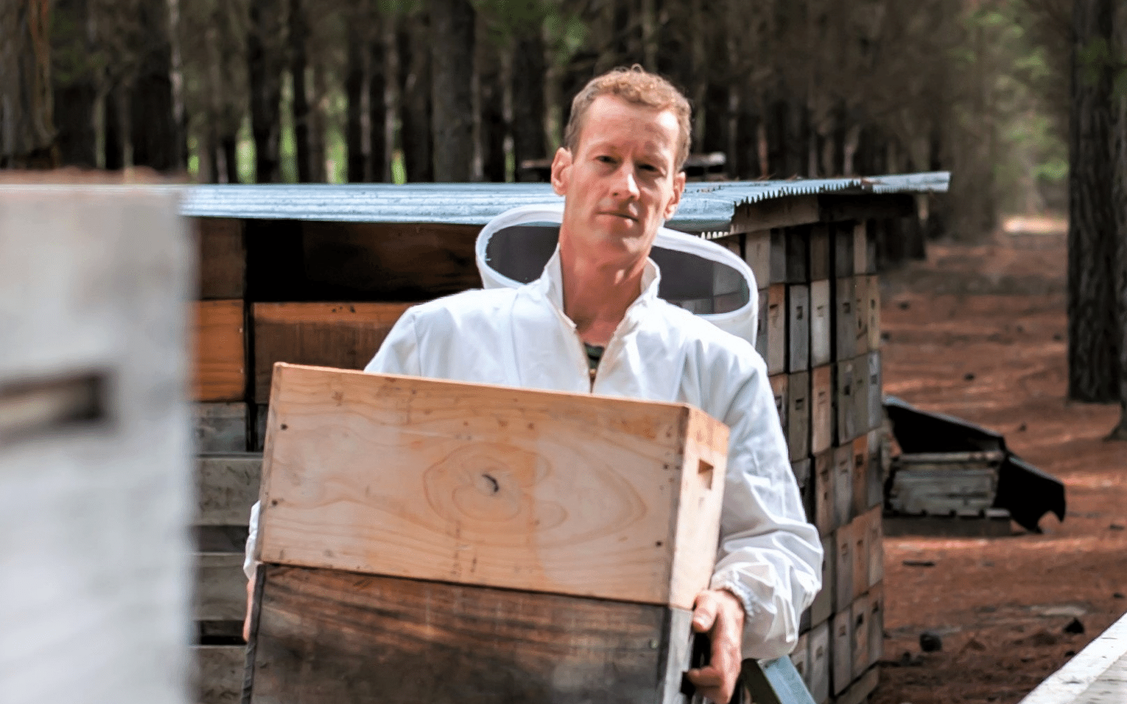 Crafted Journey Central Otago forage and gold honey beekeeper