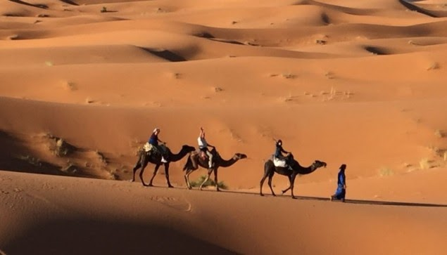 have an authentic experience in Morocco